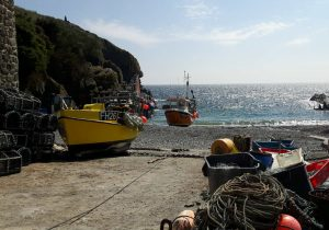Boats at Cadgwith Cove, The Lizard