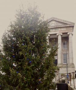 Christmas Tree in Penzance
