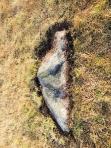 Uncovered stone from ruined stone circle, Bodmin Moor. Shaped like the  side profile of a figure.